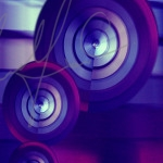 IMG_8911 purplecopy