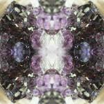 Crystal-26